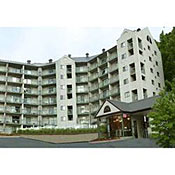 Olde Gatlinburg Rentals - Condominiums
